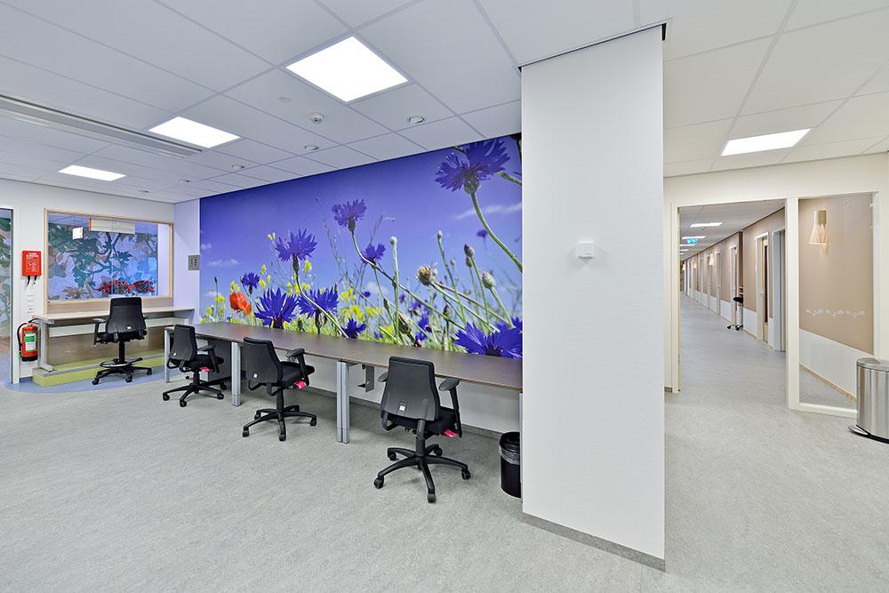 VieCuri: Schilderwerk, beglazing, behang en foto behang verpleegafdeling.